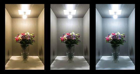 کدام رنگ نور مناسب کدام محیط است؟